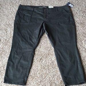 Women's plus size skinny pants. Size 24WR